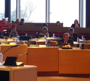 Séance plénière au Conseil Départemental